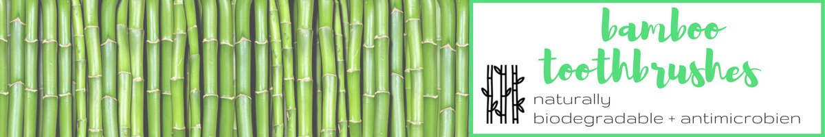 Healing Hazel Bamboo Toothbrushes: Naturally biodegradable and antimicrobien.